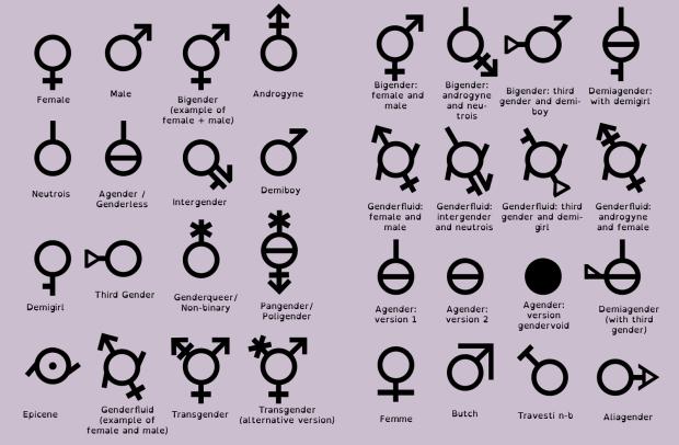 Algunas posibilidades de identidades de género para que elijas y así escapes de la normalidad de tener que ser hombre o mujer